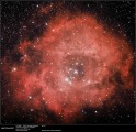 Rosettennebel / Rosette nebula by Siegfried Hold