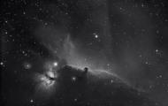 Pferdekopfnebel / Horsehead nebula by Garrett Grainger