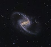 NGC1365 by Michael Sidonio